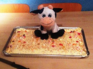 Cattle Cake