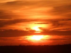 Sunset SCST